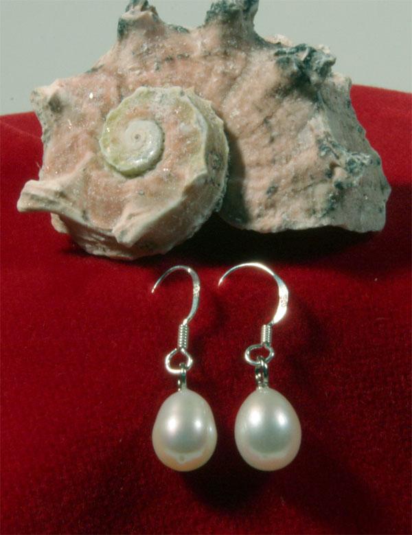 Zucht-Perlen-Ohrringe weiss, Hänger 925 Silber NEUWARE